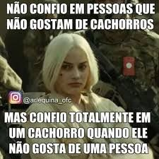 Os cachorrenhos são os mlhrs Harley Queen, Kratos God Of War, Memes Status, Lettering Tutorial, I Can Do It, E 10, Stupid Funny Memes, Ms Gs, Comedy