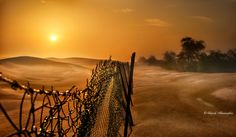 Sunrise.. by Sajeesh Shanmughan on 500px Old Photography, Sunrises, Fence, Art Work, Breaking Dawn, Composite Fencing, Artwork, Work Of Art, Art Pieces