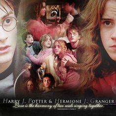 Harry Potter Dress, Harry Potter Actors, Harry Potter Hermione Granger, Harry Potter Room, Harry Potter Quotes, Harry Potter Fan Art, Harry Potter Fandom, Harry Potter World, Harmony Harry Potter