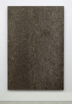 Nick van Woert . TBT (bark II), 2015