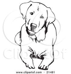 Royalty-Free (RF) Labrador Retriever Clipart, Illustrations ...