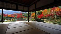 天龍寺の四季:世界遺産|京都 嵯峨嵐山 臨済宗大本山 天龍寺 公式ホームページ