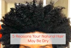 Is your Natural Hair dry? Here are 5 reasons why this may be the case, and what you can do about it.