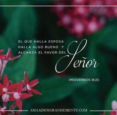 #RUT #LibrodeRut #AmaaDiosGrandemente #ComunidadADG #ADGenespanol #Biblia #Dios #Devocionalparamujeres