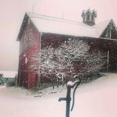 Snowstorm. 2/27 barn and hand pump. Naples, NY