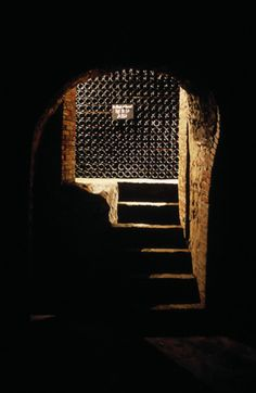 Champagne Cellar Visit in Epernay, Champagne Tasting, Wine Cellars Tour - Moët & Chandon