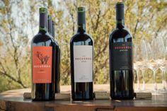 93 Points! Wine Advocate Ranks Latest Recuerdo Wines /93 Puntos! Wine Advocate Puntua Vinos Recuerdo
