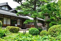The oldest running company still in operation today is a hotel in Japan named Nishiyama Onsen Keiunkan, which was created in Running Company, Asia News, Founded In, Hotels And Resorts, Did You Know, Old Things, Japan, Canning, Viajes