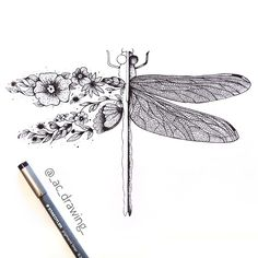 Dragonfly Drawing, Dragonfly Tattoo Design, Dragonfly Art, Tattoo Designs, Small Dragonfly Tattoo, New Tattoos, Small Tattoos, Flower Tattoos, Crown Tattoos