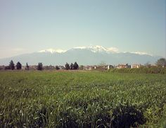 Mount Olympus from the outskirts of Katerini, Northern Greece. April 2013