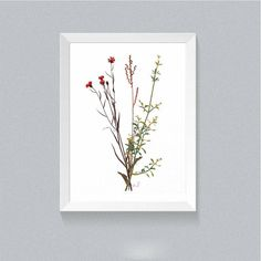Floral Wall Art, Flower Art Print, Botanical Art, Spring Decor