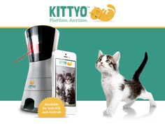 Kittyo – the only product of its kind that lets you remotely interact with your cat like never before. Device lets you watch your cats, move around a laser pointer to play with them, speak to them, record them, and dispense treats - all remotely. via Kickstarter