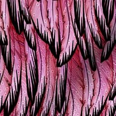 flamingo custom fabric by glimmericks for sale on Spoonflower Diy End Tables, Make And Sell, Custom Fabric, Spoonflower, Flamingo, My Design, Gift Wrapping, Fancy, Wallpaper