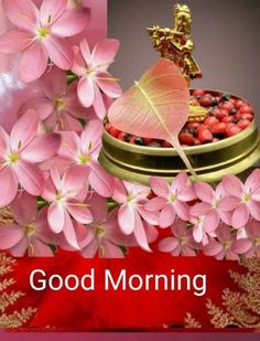Good Morning Beautiful Flowers, Good Morning Nature, Special Good Morning, Good Morning Roses, Good Morning Images Flowers, Good Morning Prayer, Good Morning Beautiful Pictures, Good Night Love Images, Good Morning Photos