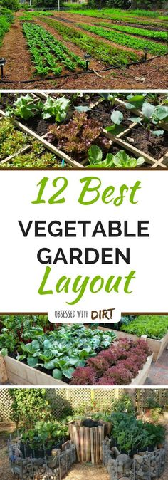 Backyard landscaping ideas fresh vegetables backyard for Perfect garden layout