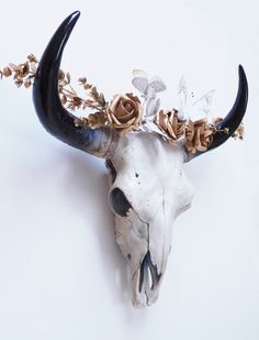 Cow Skull Animal Skull Skull Taxidermy Skull by hodihomedecor