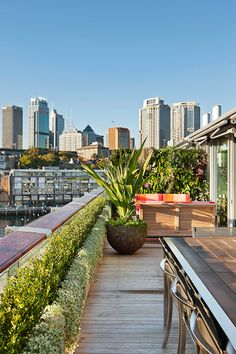 Wyer and Co. are Sydney landscape architects, creating some of the most sought-after designs locally and internationally. Sidney Australia, Great Places To Travel, Sydney, Beautiful Places To Visit, Planet Earth, Landscape, Rooftop Gardens, Plants, Design