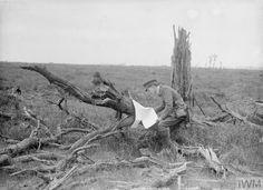 WWI, 11 June 1917, Battle of Messines; British officer studies German map. ©IWM Q 2306
