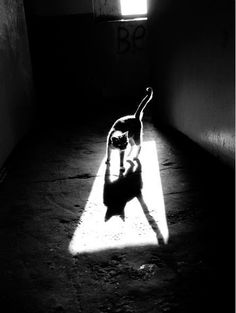 Mar 13 2020 The Absence of Light Shadow Photography by Alexey Bednij Light And Shadow Photography, Dark Photography, Black And White Photography, Photography Lighting, Chiaroscuro Photography, Contrast Photography, Photography Gallery, Shadow Photos, Photo Deco
