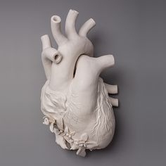 Kate Macdowell is a ceramic sculptor whose delicately carved pieces entwine the beauty and universal order of the natural world with aspects of humani...