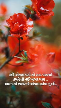Hindi Quotes, Best Quotes, Funny Quotes, Life Quotes, Antique Quotes, Special Love Quotes, Gujarati Quotes, Comedy, Abs