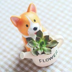 Mini Corgi Planter Pots Mini Corgi, Cute Corgi, Corgi Dog, Cactus Flower, Flower Vases, Flower Pots, Flower Bookey, Flower Film, Bouquet Flowers