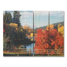 Fall Park 4 Piece Painting Print Set