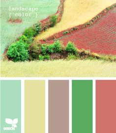 landscape color