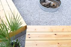 DIY firepit design trends Fire Pit Bench, Fire Pit Area, Diy Fire Pit, Fire Pit Designs, Design Trends, Design Ideas, Wood Screws, Backyard, House Design