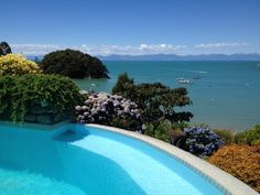 """""""Mia Casa""""- Kaiteriteri - Kaiteriteri Holiday Home for rent Mediterranean Style, Double Beds, Maine House, One Bedroom, Renting A House, Places To Go, Beach, Water, Outdoor Decor"""