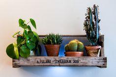 Upcycling: Blumenkasten aus Palette, Blumenkasten aus Holz / recycled palette as hanging flower box, urban jungle, cacti made by handgefertigte blumentopf via DaWanda.com