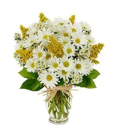 Daisy Delight bouquet.  White daisies and yellow solidago. #flowers http://www.fromyouflowers.com/products/daisy_delight_3.htm?=PINT