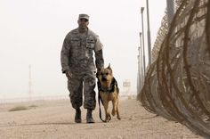 Love to our Furry Soldiers too!