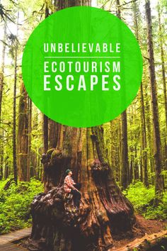 Learn more about sustainable travel and eco tourism escapes around the world Travel Tours, Travel Advice, Travel Guides, Travel Destinations, Travel Hacks, Travel Articles, Sustainable Tourism, Sustainable Living, Responsible Travel