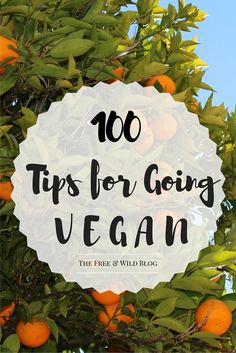 Going vegan can be hard. Sometimes, you want to quit, or maybe you just have no idea how to cook vegan. I've been eating vegan for a year, and I even slip up sometimes. But at the end of the day, I know this is the lifestyle I want. So here's my 100 tips