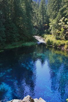 Tamolitch Pool, the place where the McKenzie River naturally reappears from its underground channel into a crystal blue pool in Oregon, USA.