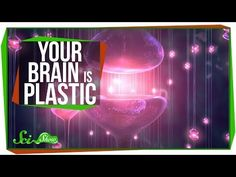 Your Brain is Plastic  #video #science #scishow