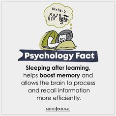 Sleeping After Learning Help Boost Memory And Allow The Brain