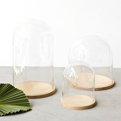 Cloche Dôme via Goodmoods