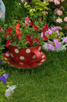#homesfornature - love this planter :-) would be great to paint clay pats and set among red plants