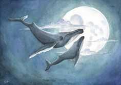 A whales dream by Pencil-Chewer on deviantART