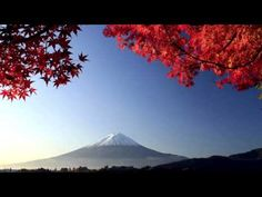 Beautiful Japanese Music | Traditional Japanese Music | Relax, Sleep, Study, Meditation - YouTube