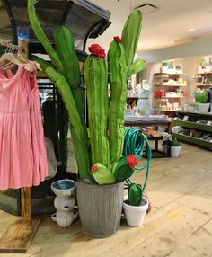 danger garden: fabric cactus at Anthropologie... Saw these yesterday and need to make me some...