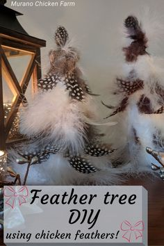Make these feather Christmas trees with chicken feathers for a cute farmhouse Christmas decor idea. Guinea fowl feather tree tutorial. Create a DIY feather tree using discarded or purchased feathers. Pet chicken keepsake. Cute Chickens, Backyard Chickens, Raising Chickens, Farmhouse Christmas Decor, Farmhouse Decor, Chicken Story, Christmas Trees, Christmas Decorations, Chicken Pictures