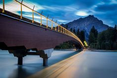 Holding Their Own: 9 Glulam Projects That Transcend Tradition - Architizer