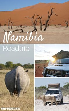 Places To Travel, Travel Destinations, Places To Visit, Camping Glamping, Camping Hacks, Things To Take Camping, Roadtrip Europa, African Holidays, Deserts Of The World