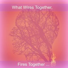 This week in MKMMA we are engaging the fact that in our brain circuitry, what wires together fires together.  As we add more layers into the exercises, with colors and shapes, we start to play with…