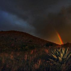 Rainbow Sunset in Alpine, Texas  Courtesy of Quigg Photography, Alpine, Texas