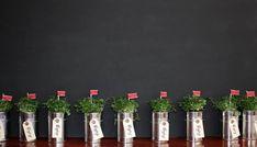 Tin Can Plants: Follow us on Instagram: @thebohemianwedding