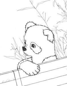 FREE panda coloring pages for adults Adult ColouringAnimals